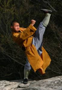 ShaolinKungFu